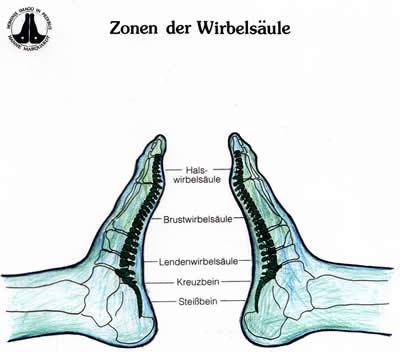 Reflexzonentherapie am Fuß